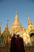 Monks make a pilgrimage to the Shwedagon pagoda, the most sacred pagoda in the country, in the capital of Yangon (Rangoon), Myanmar
