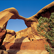 Metate Arch stands guard in Devil's Garden, Grand Staircase National Monument, Utah.