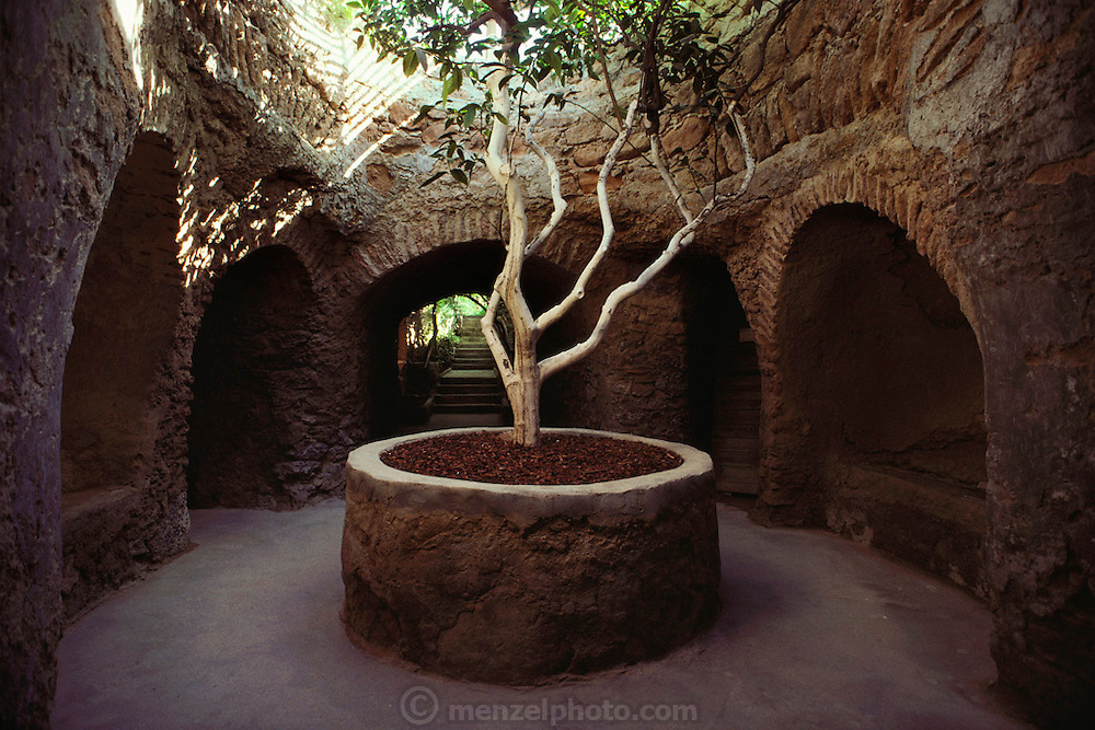A courtyard at Forestiere underground gardens: a hand built system of underground tunnels, courtyards and niches in Fresno, California, USA. Baldasare Forestiere was a Sicilian immigrant who arrived in Fresno in 1905 and spent 40 years digging the subterranean network planted with fruit trees and grape vines. Forestiere Underground Gardens.5021 W. Shaw Avenue.Fresno, CA, USA93722.(559) 271-0734.