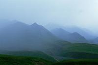 Mountains shrouded in mist Denali National Park Alaska USA