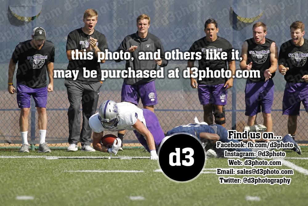 NCCA Div. III Football<br /> UW-Stout 25, No. 4 St. Thomas 22