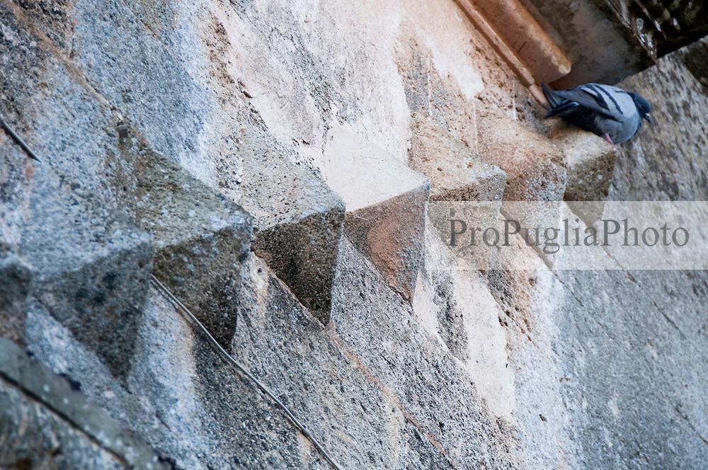 Alessano (Lecce) - Questo scatto rappresenta un piccione che dorme su una protuberanza nel muro del Palazzo di Alessano. La posizione dell'animale e le pretuberanze posizionate in file danno l'impressione che il piccione abbia scalato una sorta di ipotetica scalinata.
