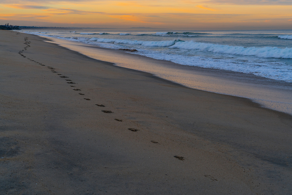 The strides of a runner are preserved in the wet sand on the beach. Photo by Adel B. Korkor.
