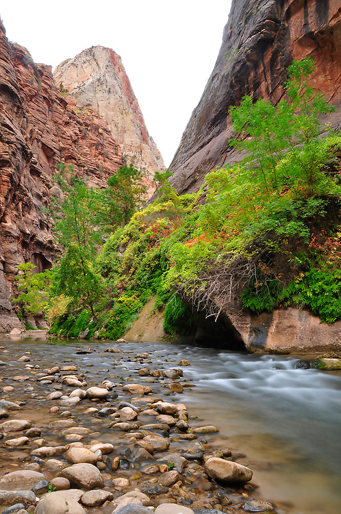 North Fork of the Virgin River flowing through Zion Narrows, Zion National Park, Utah.