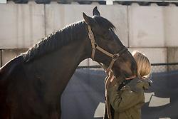 Bauer Marie, GER, Eye Catcher<br /> CDI3* Opglabbeek<br /> © Hippo Foto - Sharon Vandeput<br /> 23/04/21