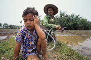 PEASANT FARMING, Malaysia. Peasant farmer with fertilizer spray, in padi, Kedah State.  No protection for him nor his child. World Bank funded  project. Poor farmers, peasants, planting, harvesting, cultivating rice padi.