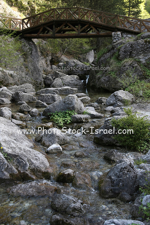 Greece, Macedonia, Mount Olympus National Park water flowing in a river bed