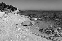La riserva marina a Torre Guaceto viene istituita il 4 dicembre 1991 su incarico del Ministero della Marina Mercantile ed è situata sulla costa adriatica dell'alto Salento. Nel 2000, con decreto del Ministero dell'Ambiente, la gestione viene affidata un consorzio composto dalle Amministrazioni Comunali di Brindisi e Carovigno, competenti per territorio, e l'associazione W.W.F. Italia.<br /> L'area si estende lungo un tratto di costa di 8 Km, compreso tra Punta Penna Grossa a nord e la zona Apani a sud. L'area marina si estende per circa 2.200 ha ed è suddivisa in tre zone con diverso grado di tutela:  Zona A di Riserva Integrale, in cui è proibita qualsiasi attività antropica, Zona B di Riserva Generale, dove è consentita la fruizione e l'uso sostenibile dell'ambiente, Zona C di Riserva Parziale,  dove è possibile svolgere anche le attività di pesca e la navigazione non a motore. La zona interna ha una profondità di circa 3 km dalla costa verso l'interno, ed è caratterizzata da un'ampia zona umida, presenza di macchia mediterranea, oliveti e seminativi. La costa nord è caratterizzata da spiaggia e dune sabbiose, mentre a sud da falesia alta a roccia argillosa.