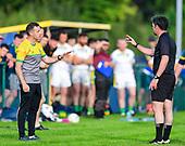 Syddan v Ballinabrackey - Meath IFC 2020