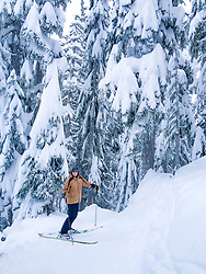 United States, Washington, Crystal Mountain. Snow-covered trees and skier.