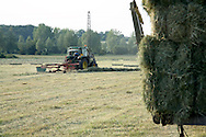 Summer haymaking on rural English farm