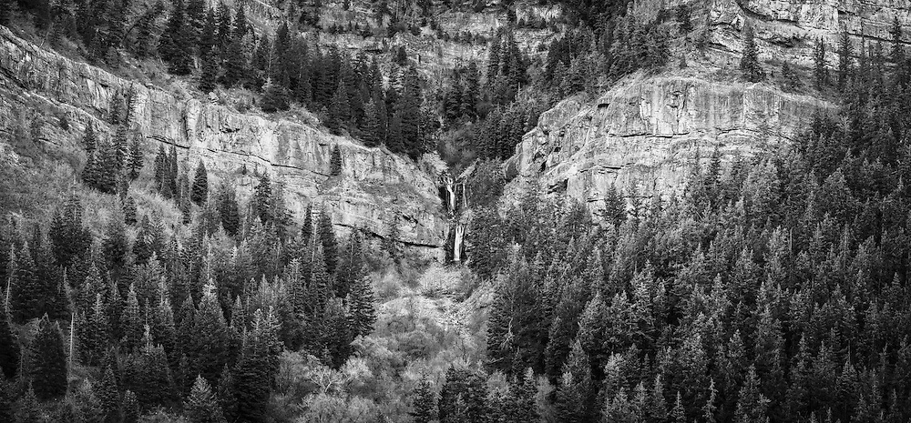 Pine trees surround a small waterfall cascading down the cliffs in a rocky Utah canyon.