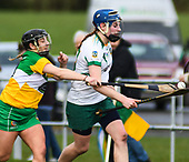 Meath v Offaly - National Camogie League 2017