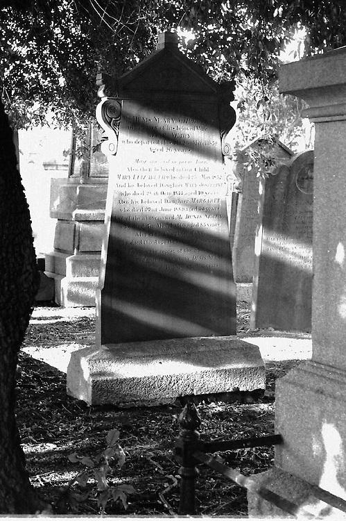 Glasnevin cemetery, Dublin 1996