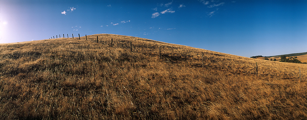 Farm hilltop with fencing in the Ferguson valley