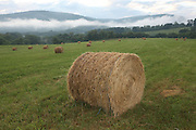 Hay bails on a farm in front of the Blue Ridge mountains  in Albemarle County, VA.