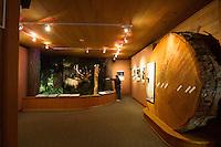 Port Angeles, Olympic National Park Visitors Center. Olympic Peninsula, WA