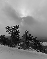 Two Trees with a Winter Storm Approaching. Rocky Mountain National Park. Image taken with a Nikon D2xs camera and 14-24 mm f/2.8 lens (ISO 100, 14 mm, f/11, 1/180 sec).
