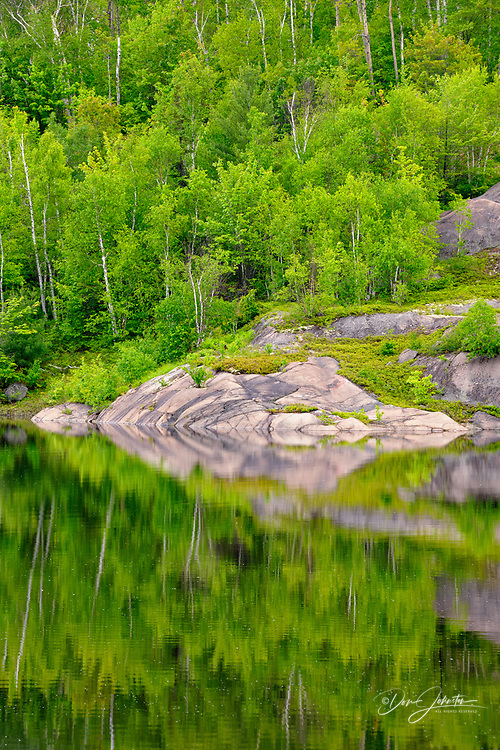 Spring forest and rock outcrops reflected in Elbow Lake, Wanup, Ontario, Canada