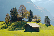 Alpine Pasture with cow shed - Grinderwald - Alps - Switzerland .<br /> <br /> Visit our SWITZERLAND  & ALPS PHOTO COLLECTIONS for more  photos  to browse of  download or buy as prints https://funkystock.photoshelter.com/gallery-collection/Pictures-Images-of-Switzerland-Photos-of-Swiss-Alps-Landmark-Sites/C0000DPgRJMSrQ3U