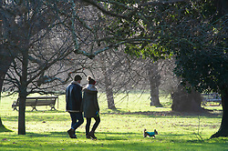 © Licensed to London News Pictures. 08/01/2019. Greenwich, UK.A couple walk their dog. Winter sunny weather at Greenwich Park,Greenwich today but temperatures at set to plunge. Photo credit: Grant Falvey/LNP