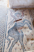 Israel, Lower Galilee, Zippori National Park The city of Zippori (Sepphoris) A Roman Byzantine period city with an abundance of mosaics The Nile House The Centaur mosaic