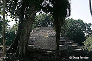 Jaguar Temple, a Mayan early classic pyramid, structure N10-9, Lamanai Ruins, Orange Walk District, Belize, Central America
