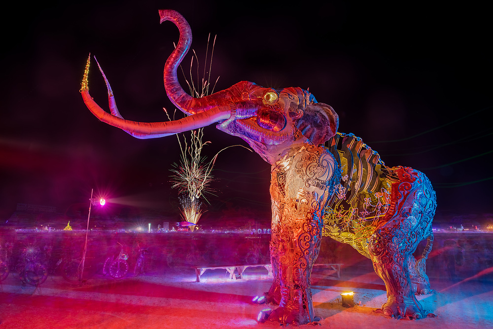 Fireworks by DaveX and The Monumental Mammoth<br /> by: Girl Scout Gold Award Recipient Tahoe Mack, Mentor and Protector of Tule Springs Representative Sherri Grotheer, and artists Luis Varela-Rico and Dana Albany<br /> from: Las Vegas, NV<br /> year: 2019<br /> <br /> The Monumental Mammoth project will depict a life-sized steel Colombian mammoth skeleton collaged with metal found objects to tell the story of Tule Spring National Monument's past, present, and future. The sheer size and struggle of the mammoth's stance is a representation of the universal call to protect what the earth has given humanity. As a community, we are called together to protect the fossils of our past and the education of our future. Dana Albany and Luis Varela-Rico are pulling together the sleek elements of the interior steel structure and the intricate weavings to represents the distinctive community that is Las Vegas.It also tells the story of a rising feminine power, and shows all women of any age that anything is possible!<br /> <br /> URL: https://tulemammothproject.wordpress.com<br /> Contact: tulemammothproject@gmail.com<br /> <br /> https://burningman.org/event/brc/2019-art-installations/?yyyy=&artType=H#a2I0V000001AVtMUAW