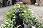 A black rabbit sculpture is on sale at a garden shop inside Beningbrough Hall, Yorkshire, England, United Kingdom.