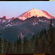 Sunrise, Mount Rainier National Park. 4x5 Kodak Ektar 100. <br /> photo by Nathan Lambrecht