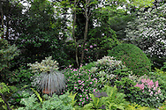 BEAUTIFUL PLANTS AND BLOOMS IN A SHADE GARDEN