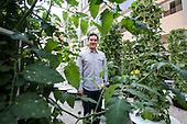 Niels Thorlaksson of LA Urban Farms.