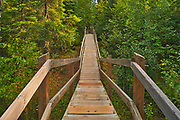 Wooden boardwalk leading from the parking lot through the boreal forest to Pisew Falls<br />Pisew Falls Provincial Park<br />Manitoba<br />Canada