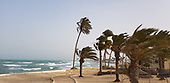 tunisia (masterclass #2) - 2018   note8