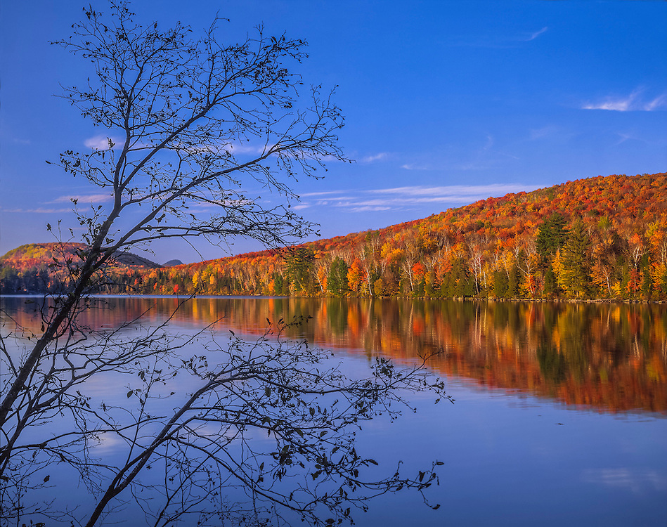 Alder branches frame view of fall foliage reflected in Rickers Pond, Marshfield, VT