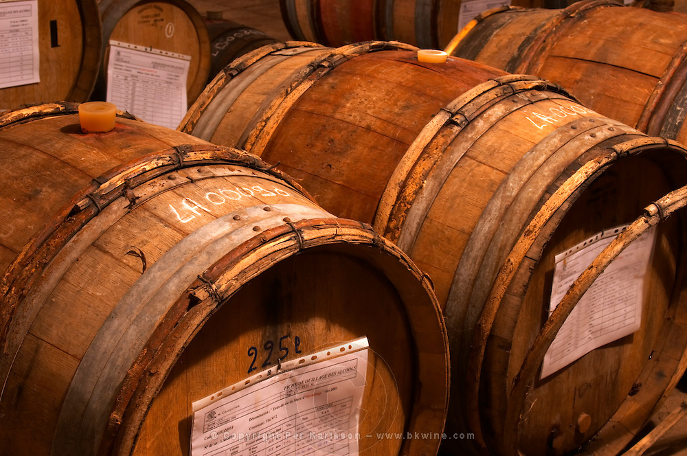 In the Chapoutier winery. The special storage room for spirits, marc, fine, with old wooden barrels and vats. Chapoutier is one of the few who still have the right to distil alcohol. Very old 225 litre barrel. Domaine M Chapoutier, Tain l'Hermitage, Drome Drôme, France Europe