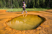 Historically, humans have mined the Paint Pots, natural ochre beds in Kootenay National Park, British Columbia, Canada. The Paint Pots formed by the accumulation of iron oxide around the outlets of three cold mineral springs. The Ktunaxa (formerly Kootenay), Stoney, and Blackfoot tribes collected ochre here for important ceremonies and trade. The yellow ochre was cleaned, kneaded with water into walnut sized balls, then flattened into cakes and baked. The red powder was mixed with fish oil or animal grease to paint their bodies, tipis, clothing or pictures on the rocks.  In the early 1900s, Europeans hand-dug and sacked the ochre for hauling 24 kilometers via horse-drawn wagons to the Canadian Pacific Railway line at present-day Castle Mountain, where it was shipped by train to Calgary and became a pigment base for paint. To license this Copyright photo, please inquire at PhotoSeek.com.