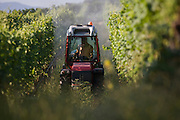 Early morning spraying of apple crops on land south-west of Bolzano, northern Italy. Every tenth apple in Europe is grown in south Tyrol, making the region Europe's largest apple producer. The area produces 900,000 tons of apples per year on a fruit-growing area of 18,400 hectares.