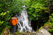 An unnamed waterfall along the South Tongass Highway, Tongass National Forest, Ketchikan, Alaska.