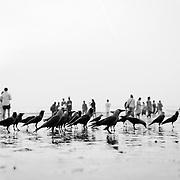 Mumbai, India, Asia
