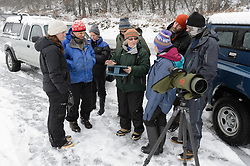 Pam Randles, Takshanuk Watershed Council Education Director (center), reviews the previous day's bald eagle count that her team of students conducted for their citizen science class at the Haines School with a team of researchers studying bald eagle migration. Rachel Wheat (left), a graduate student at the University of California Santa Cruz is conducting a bald eagle migration study of eagles that visit the Chilkat River for her doctoral dissertation. She hopes to learn how closely eagles track salmon availability across time and space. Wheat is tracking bald eagles using solar-powered GPS satellite transmitters (also known as a PTT - platform transmitter terminal)  that attach to the backs of the eagles using a lightweight harness. Assisting Wheat with the capture, tagging and mounting of the transmitters on the birds are (from right to left): Dr. Scott Ford, avian veterinarian, Avian Speciality Veterinary Services of Alaska; Steve Lewis, Raptor Management Coordinator, U.S. Fish & Wildlife Service; Yiwei Wang, graduate student at University of California Santa Cruz; Dr. Taal Levi, wildlife ecologist, Cary Institute of Ecosystem Studies and Dr. Chris Wilmers, associate professor University of California Santa Cruz (second from left). Also pictured (third person from left) is Liza Gross, freelance journalist. During late fall, bald eagles congregate along the Chilkat River to feed on salmon. This gathering of bald eagles in the Alaska Chilkat Bald Eagle Preserve is believed to be one of the largest gatherings of bald eagles in the world.