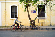 A man cycles past a bicycle and tree on Rue Romain Rolland, Pondicherry, India. Pondicherry now Puducherry is a Union Territory of India and was a French territory until 1954 legally on 16 August 1962. The French Quarter of the town retains a strong French influence in terms of architecture and culture.