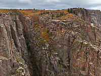 https://Duncan.co/vegetation-on-the-cliffs-at-black-gunnison