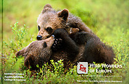 Wild Wonders of Europe Exhibition catalogue