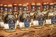 Bottles of white tequila in the tasting room inside the Casa Siete Leguas, El Centenario tequila distillery in Atotonilco de Alto, Jalisco, Mexico. The tequila is aged from 2-12 years in white oak barrels that once held American Kentucky Bourbon. The Seven Leagues tequila distillery is the oldest family owned distillery producing authentic handcrafted tequila using traditional methods.