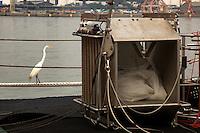 13-17/Enero/2011. Brasil. Río de Janeiro.Escala del BIO Hespérides en Río de Janeiro tras la primera etapa de la Expedición Malaspina.<br /> <br /> ©JOAN COSTA....