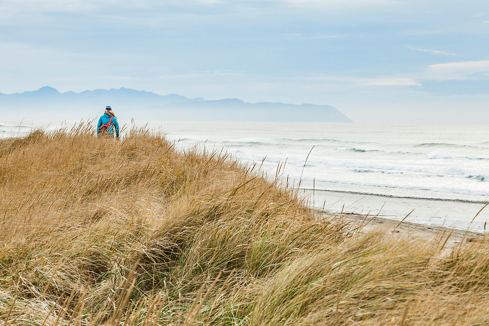 A woman hiking on the grassy sand dunes of Fort Stevens State Park along the Pacific coast, Oregon, USA.