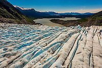 Aerial view over the Mendenhall Glacier showing rows of crevasses (with Mendenhall Lake in background and behind it is Auke Bay, an arm of the Lynn Canal), Juneau , Alaska USA.