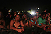 August 25, 2012-Brooklyn, NY: Audience at the Afropunk Festival 2012 held in Brooklyn, NY on August 25, 2012. The Afropunk Festival has become a Brooklyn intuition, the focal point for the burgeoning Afro-punk movement. Over the past seven years, the festival has presented new artists before they hit it big, such as Grammy-nominated Santigold, The Noisettes and Janelle Monae. Afro-punk mainstays like Saul Williams, The Dirtbombs, and Dallas Austin have also graced Afro-punk's stages. (Terrence Jennings/TerrenceJennings.com)