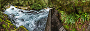 See the crashing whitewater of Marian Stream from the Viewing Gantry along Lake Marian Track, Hollyford Road, in Fiordland National Park, Southland region, South Island of New Zealand. In 1990, UNESCO honored Te Wahipounamu - South West New Zealand as a World Heritage Area. This image was stitched from multiple overlapping photos.